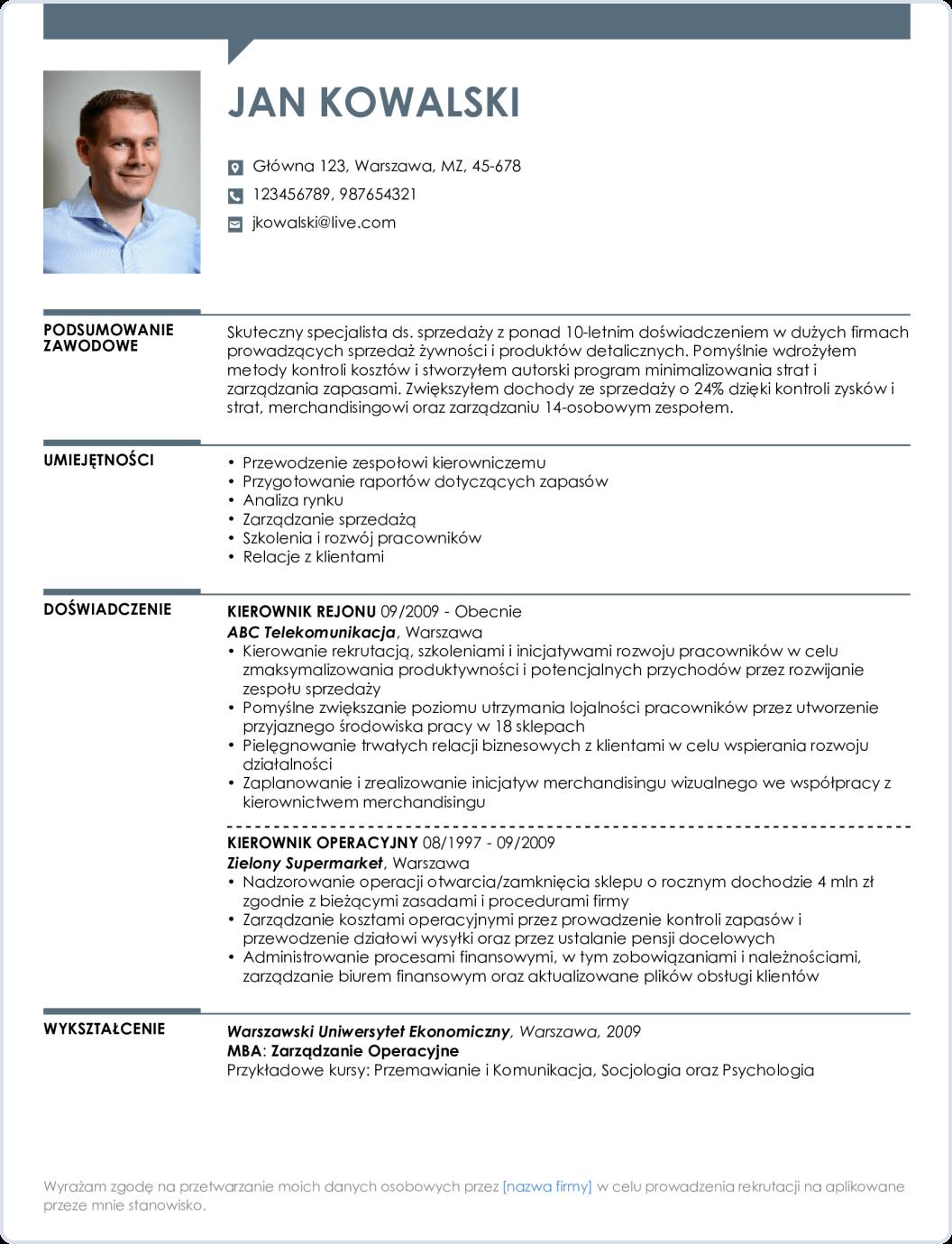 Szablon CV profesjonalny