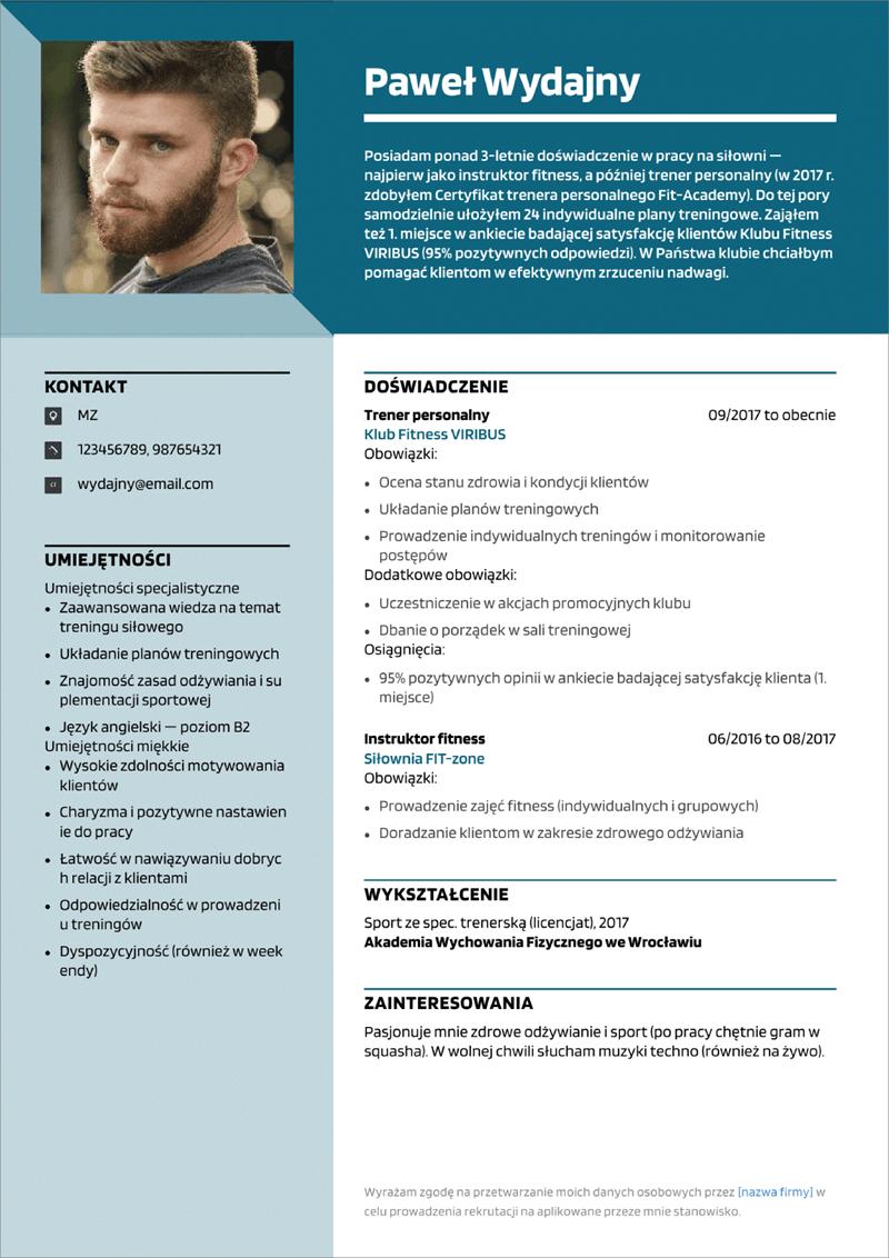 wzór cv pdf